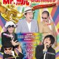Mr.鯱'shachihoko